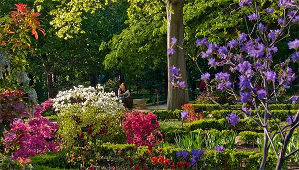 El Real Jardín Botánico de Madrid, VI Premio Iberoamericano de ...