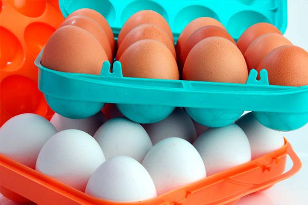 StopBulos: No hay razón para tirar los huevos de tu nevera. Así se contagia  la salmonelosis